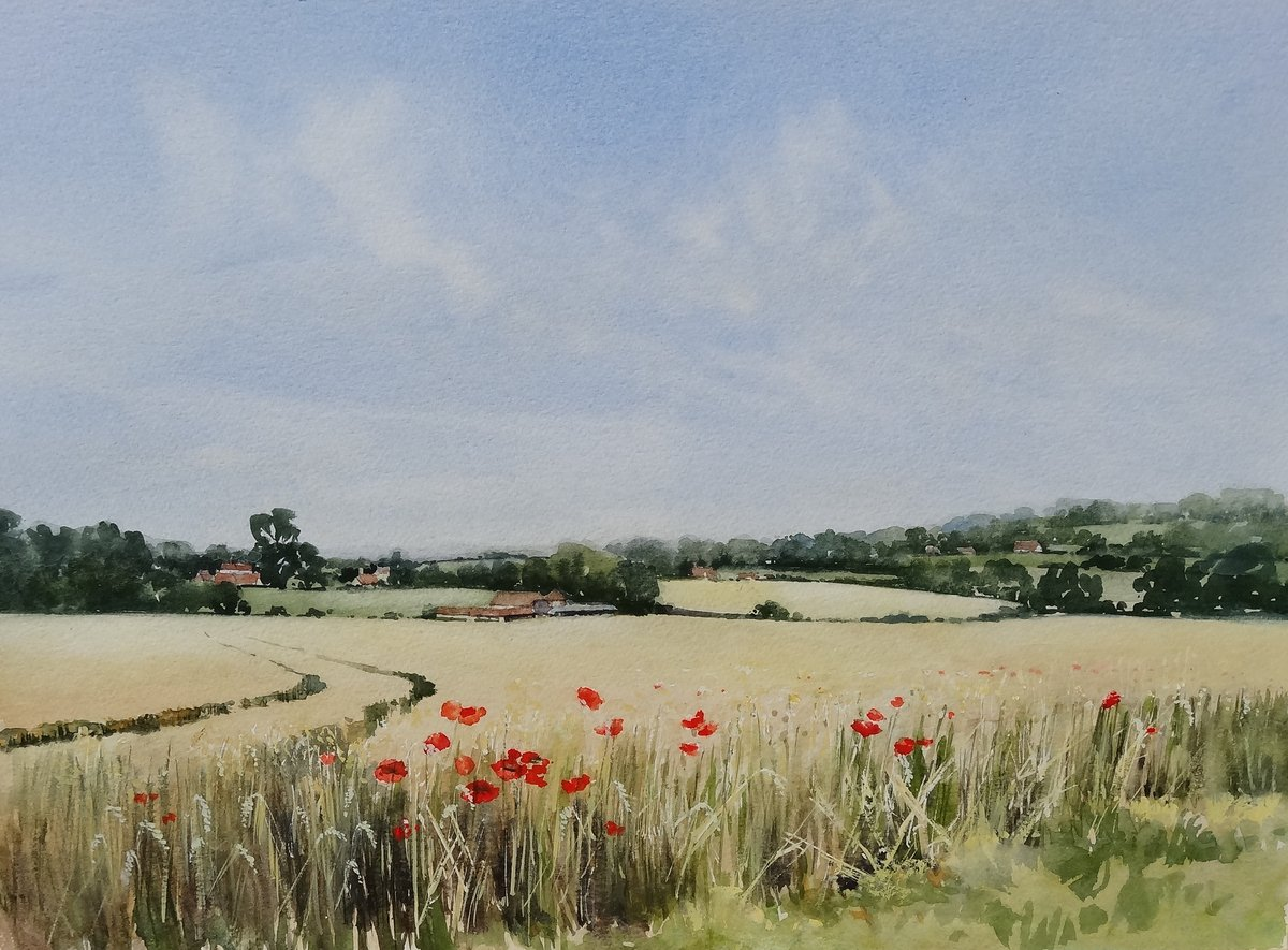 image showing Summer Cornfield. Watercolour